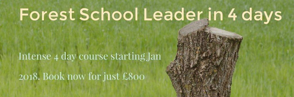 In January we are offering a compact 4 day Forest School Leader course.