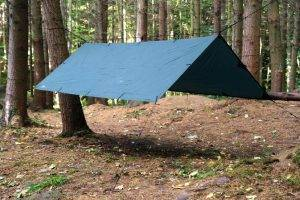 DDtarp-300x200 Den Building Forest School