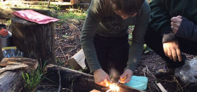 "<span class=""ee-status event-active-status-DTU"">Upcoming</span>Level 3 Forest School Training – April 2020"