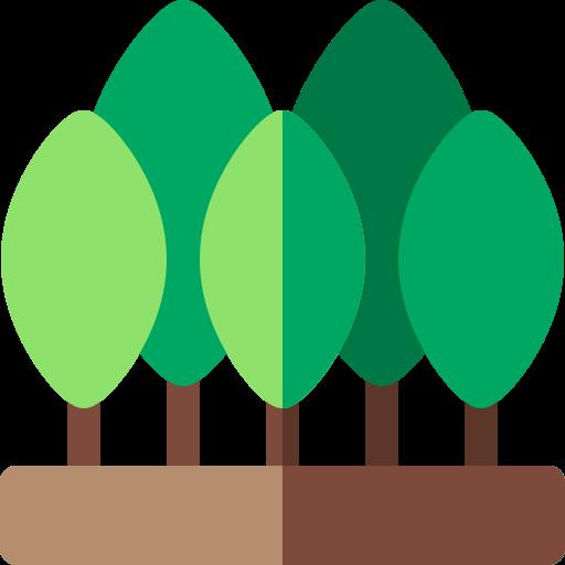 forest Forest School Training Voucher