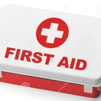 Book your Forest School First Aid